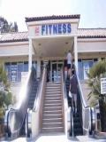 Scari Rulante La Fitness