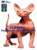 Reclama La Gilette