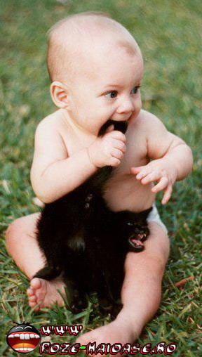 Poze Pisici Si Bebelusi 2021