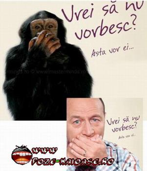 Basescu Si Cimpanzeu