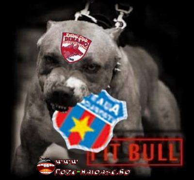 Dinamo Mananca Steaua 2021