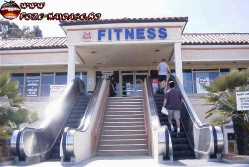 Scari Rulante La Fitness 2021