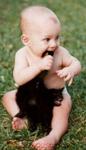 Bebelusi Si Pisici