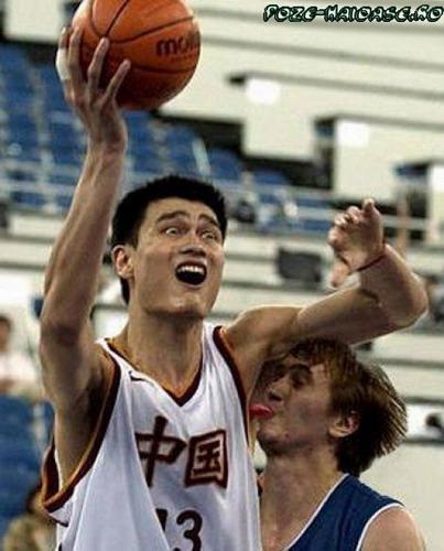 Basket 2021