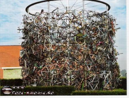 Jocuri Cu Biciclete 2021